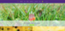 Drinking-Company-Web-Design.jpg