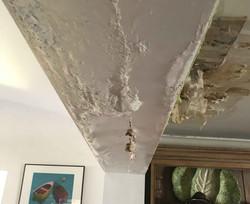 Reel-Contractors-Roof-Wall-Damage-Experts-Company-Pembroke-Pines-Fl