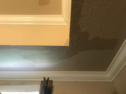 Reel-Contractors-Roof-Water-Damage-Experts-Company-Pembroke-Pines-Fl