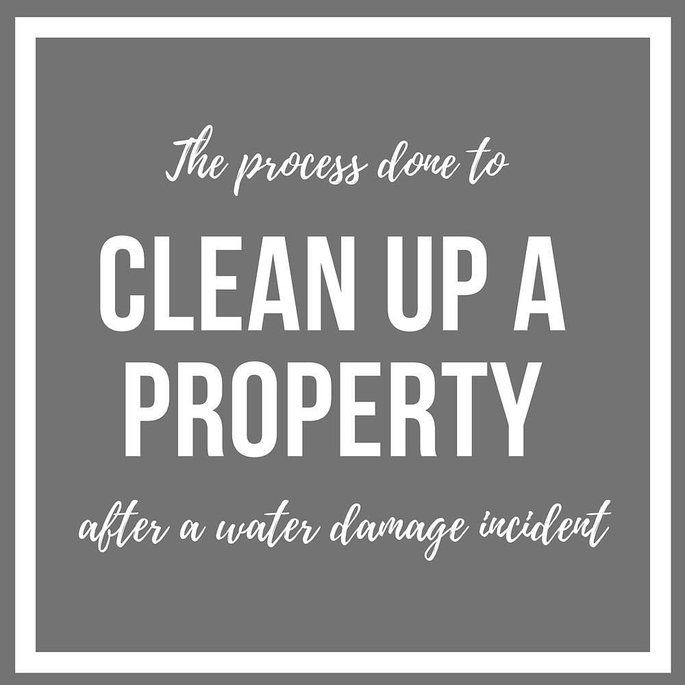 the-process-done-to-clean-up-a-property-after-a-water-damage-incident