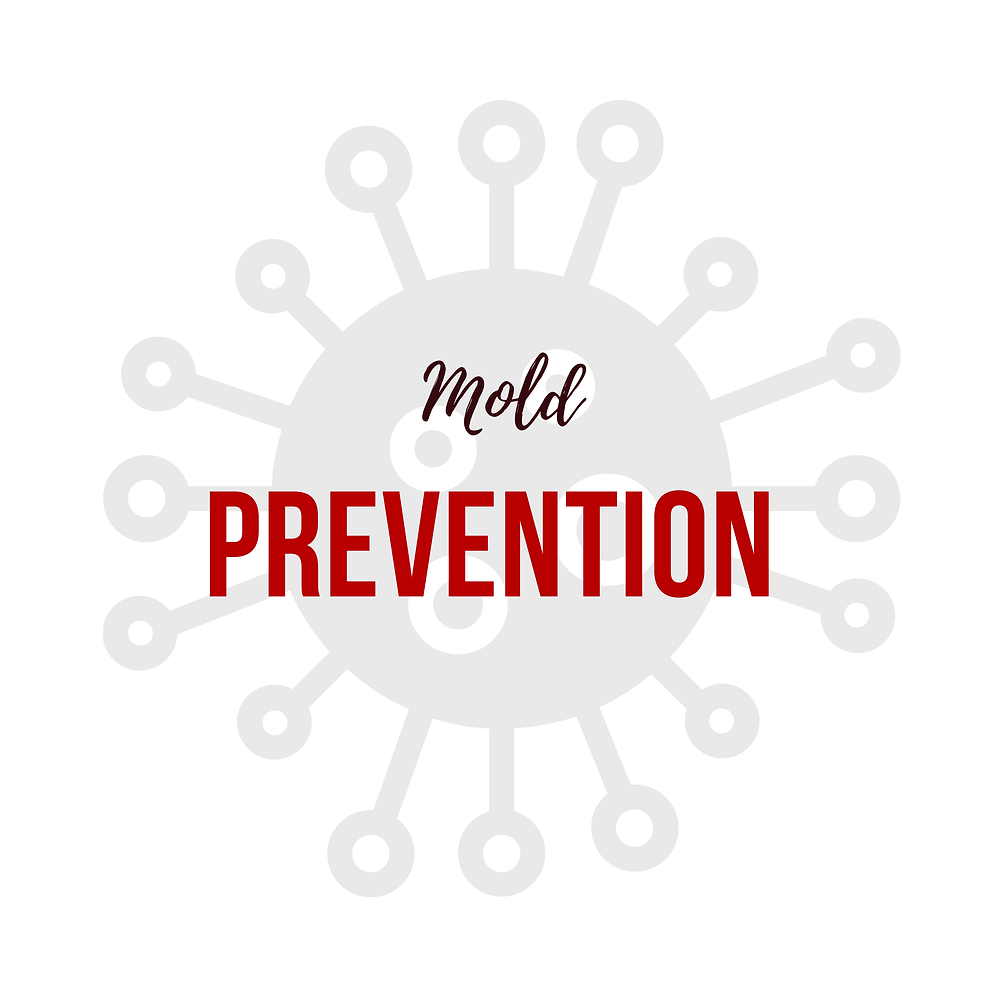 water-restoration-benefit-number-2-is-mold-prevention