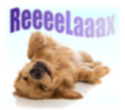 "Cute Golden Retreiver puppy on his/her back, totally relaxed. ""ReeeeLaaax"""