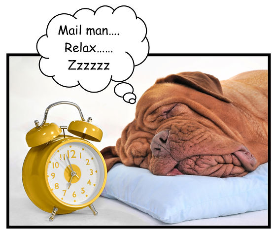 mail man relax.jpg