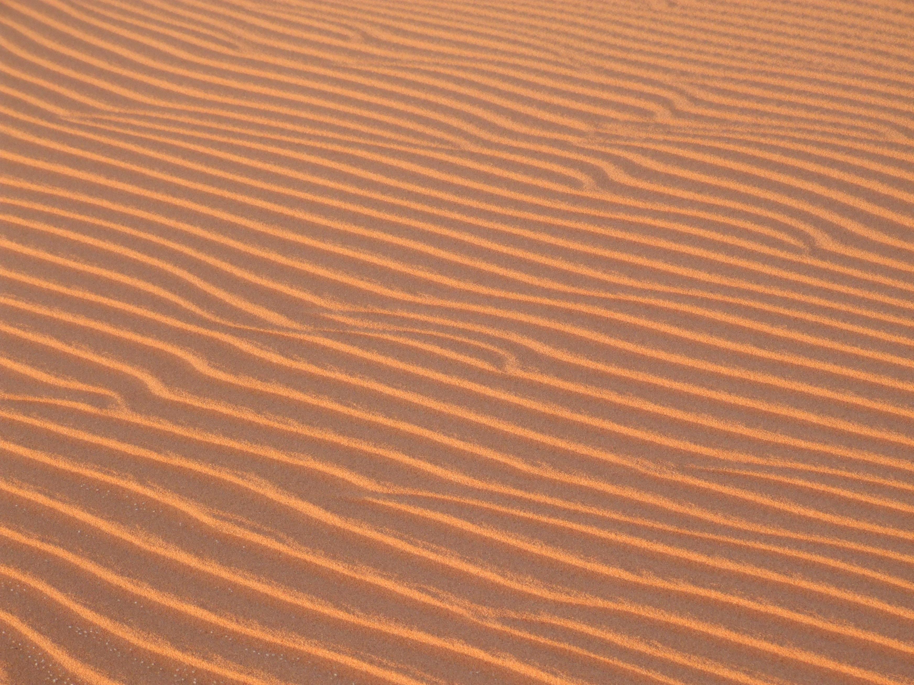 המדבר המערבי - מערת נטיפים, שחיינים ואבנים יקרות בלב מדבר סהרה במצרים