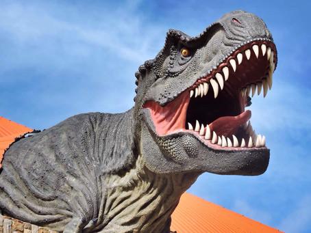 שמורת טורוטורו בבוליביה: דינוזאורים ונהר המים הנעלמים
