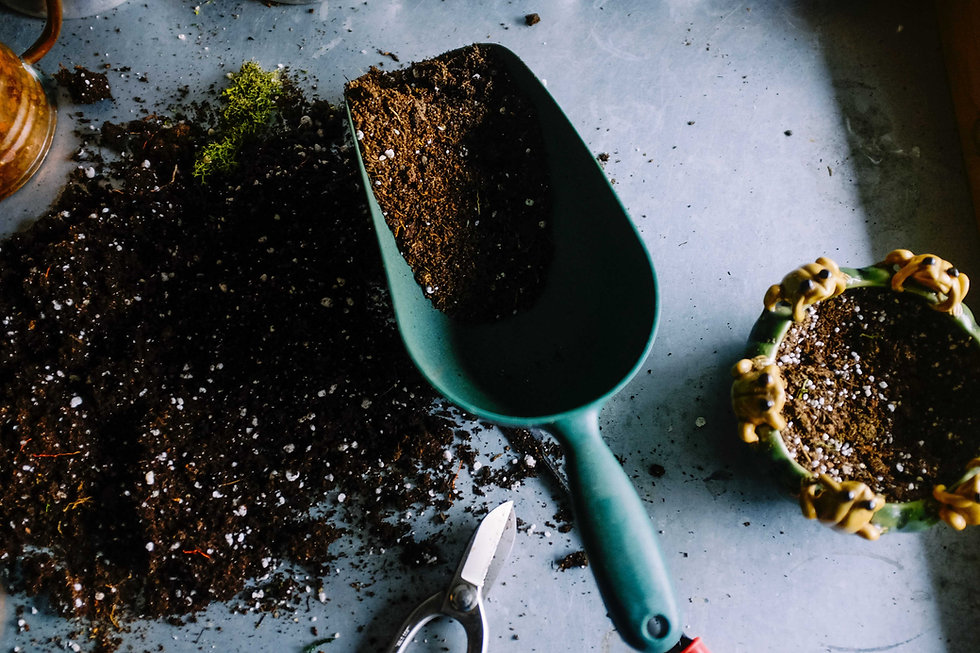 Eine Schaufel mit frischer Erde, gemischt mit KALEA Kompost