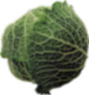 Cabbage - 1917x2044.png