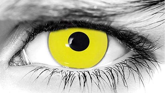Zombie Yellow