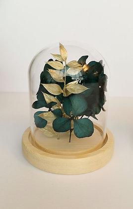 Mini cloche Hortensia et Ruscus doré