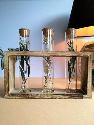 Décoration végétale - tubes en verre