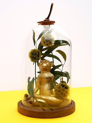 Méditation en forêt - Lotus