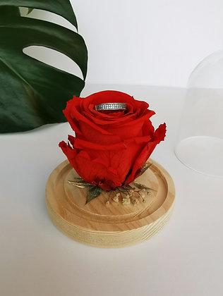 Mini cloche - rose éternelle