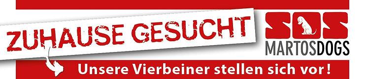 Banner_Homepage_Zuhause gesucht quer.jpg