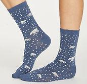 spw432-blue-slate--arctic-polar-bear-bam