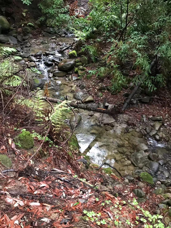 CG creek