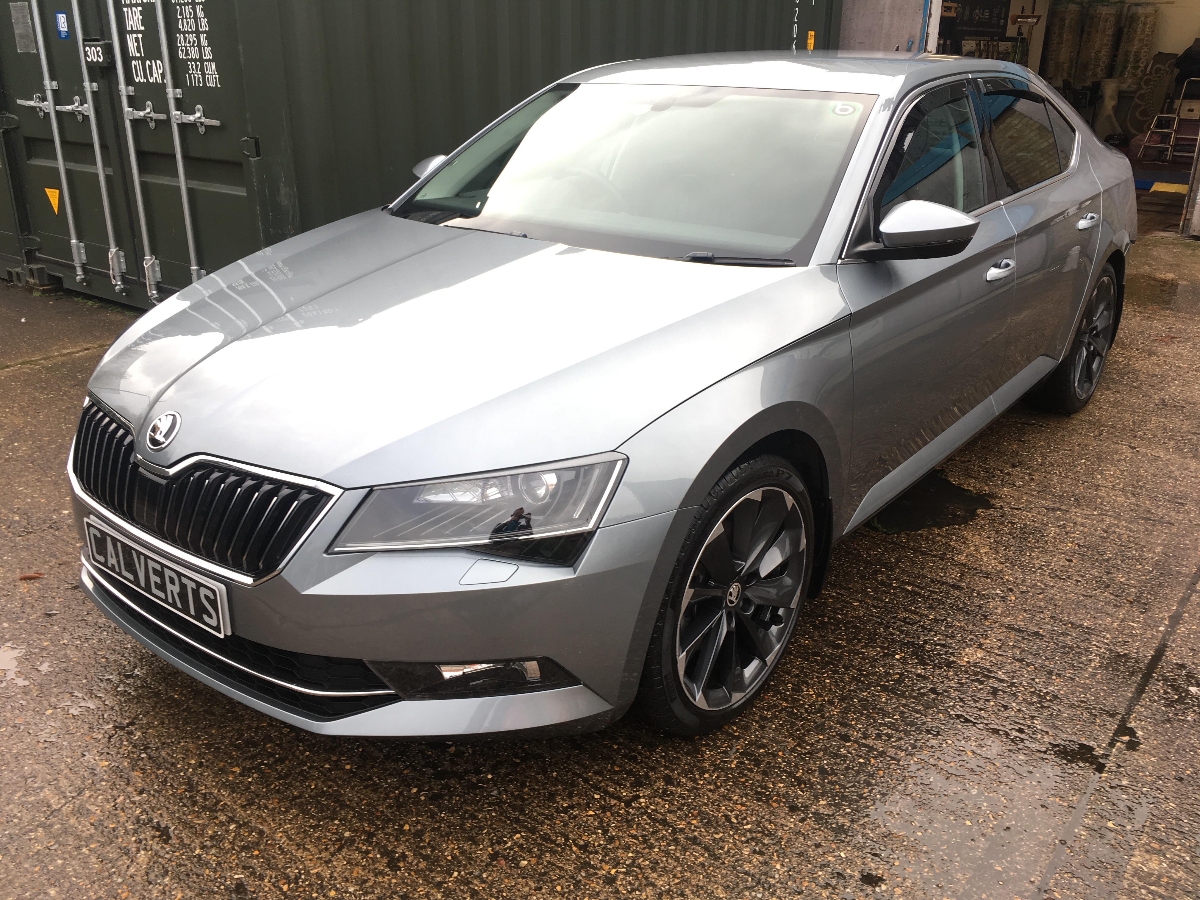 Skoda Octavia Winter Protection