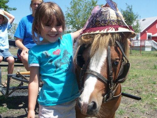 12-Child Pony Party