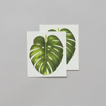 PHILODENDRON MONSTERA SET OF TWO