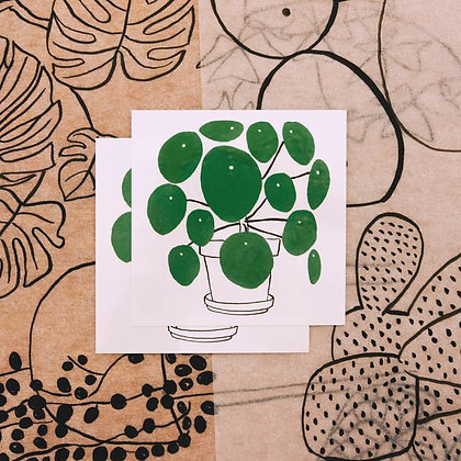 PILEA PLANT TATTOO SET OF TWO