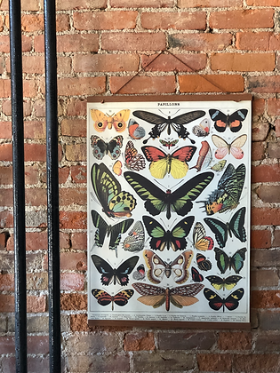 VINTAGE STYLE BUTTERLY POSTER