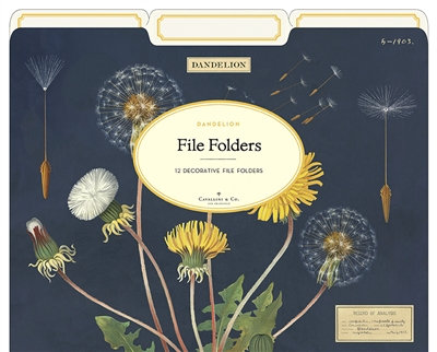 DANDELION FILE FOLDERS