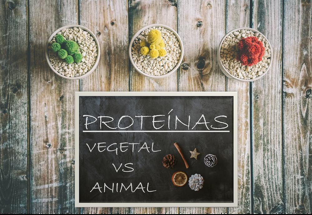 Proteína Vegetal vs Proteína Animal