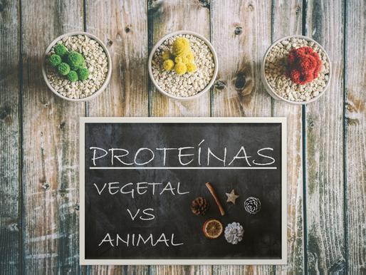 El dilema de la Proteína Vegetal