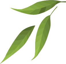leaf only pieces 2.png