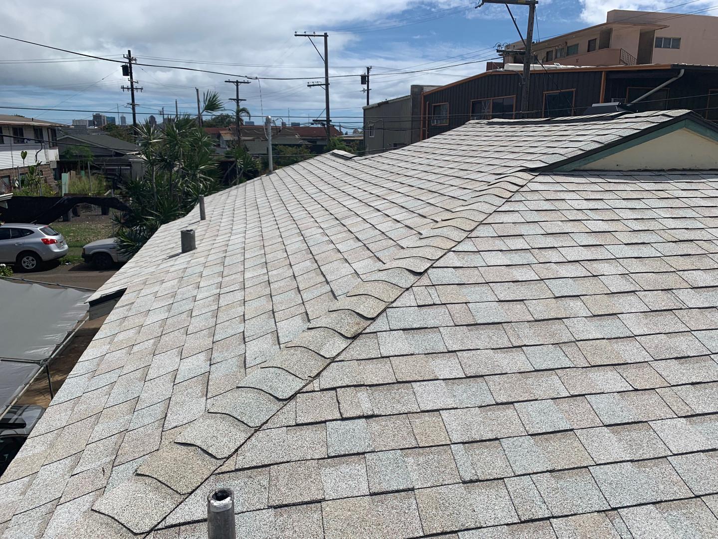 Belmonte's Roof 11.JPG
