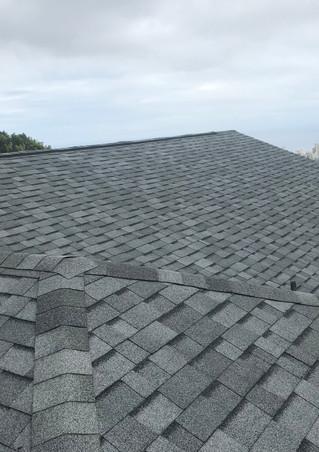 Belmonte's Roof 4.JPG