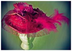Rose-Pink Bird