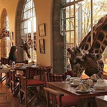 Travel_To_Giraffe_Manor_Zephyr_Travel_Cu
