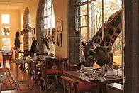 Travel to Giraffe Manor with Zephyr Travel Curators