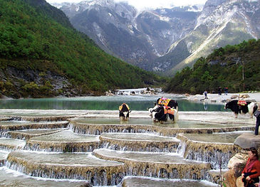 Yunnan Shangri-la White Water Terraces (