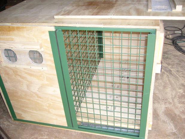cheetah crate1.jpg
