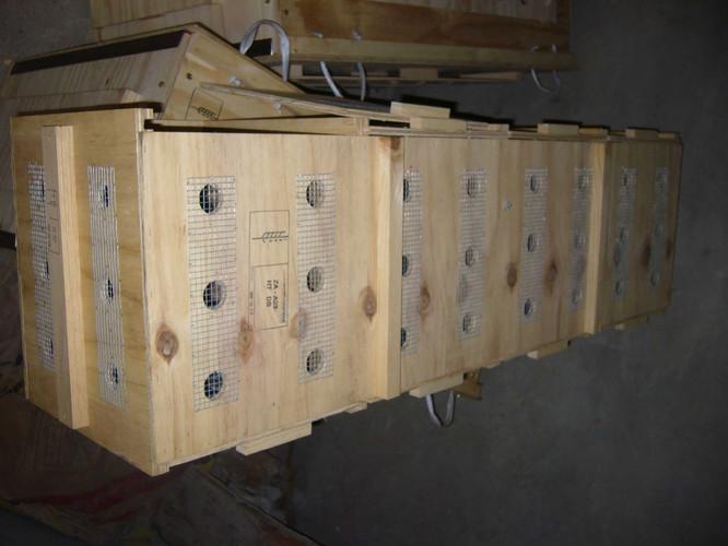 meercat crate ww.jpg