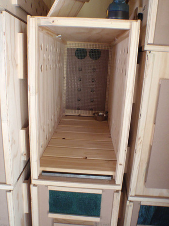 lynx crate3.jpg