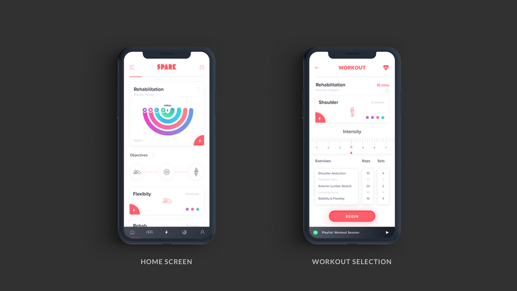 Home Feed / Exercise