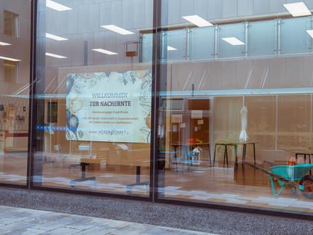 Vom Acker ins Kunstmuseum Liechtenstein