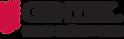 LogoGentek_FR.png