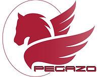 pegazo-7%20_edited.jpg