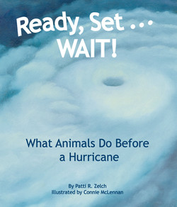 Ready, Set... Wait! What Animals Do Before a Hurricane