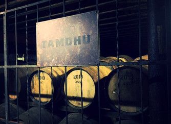 Tamdhu. Their 10YR old is so delicious, only more good can come as they grow!