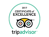 Cairns Beaches Flashpackers Palm Cove Backpackers Hostel Trip Advisor Certificate of Excellence 2017
