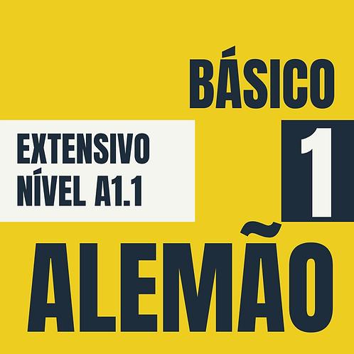 Básico 1 - Alemão (A1.1)