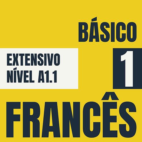 Básico 1  - Francês (A1.1)