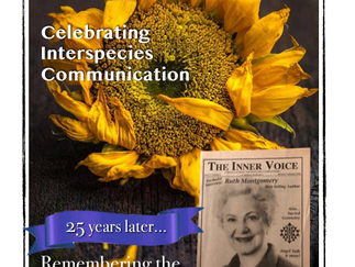 The Inner Voice - October 2020