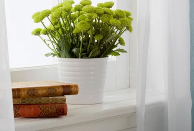 Vase with Flowers_edited.jpg
