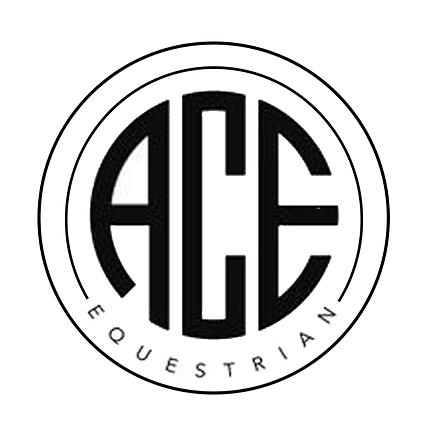 ACE_Logo_2_640x.png