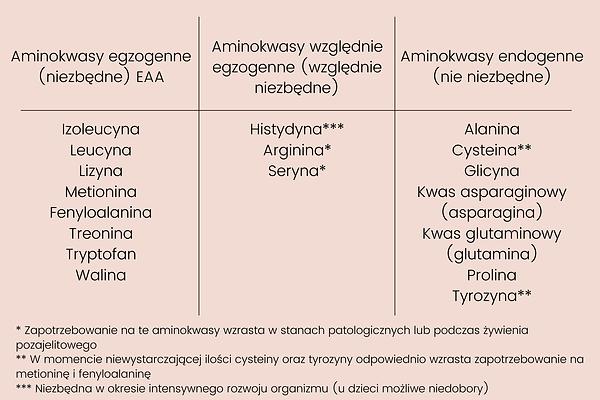 Aminokwasy_podział.png